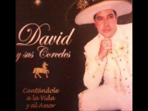 AMOR SINCERO, EL DE MAMA - DAVID CASTAÑEDA .wmv