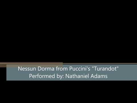 "Nathaniel Adams performs Puccini's Nessun Dorma from ""Turandot"""