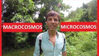 Legatura dintre Microcosmos si Macrocosmos