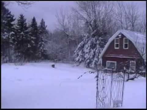 New Brunswick Weather