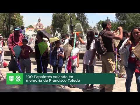 Papalotes rinden tributo a Francisco Toledo en la Alameda Central