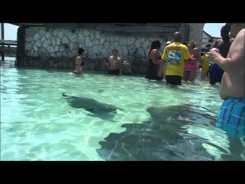 Exuma Bahmas Day trip from Nassau by Power Boat Adventures