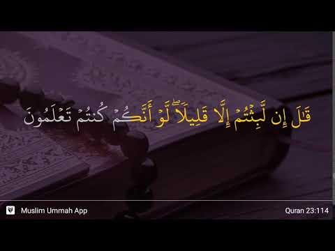 Al-Mu'minun Ayat 114