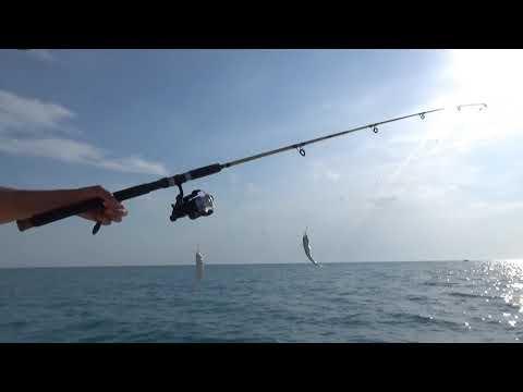 В море на рыбалке всей семьёй. 1000 руб с удочкой, 500 руб для тех, кто просто смотрит
