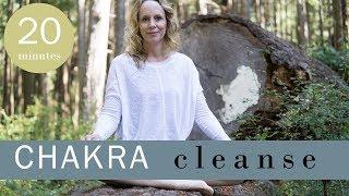 Chakra Cleansing Yoga Nidra for Inner Radiance | Yoga with Melissa 447