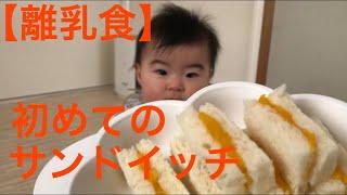 【離乳食】初めてのサンドイッチ thumbnail