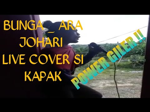 Bunga Ara Johari cover by si kapak