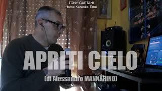 Tony Gaetani - Apriti cielo (Home Karaoke)