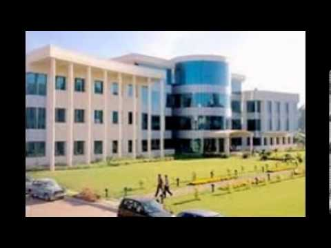 9241570412 Comedk 2014 Admission In Rv College Of