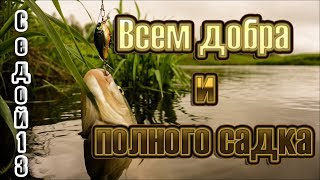 {Седой13}  Russian Fishing 4 и заказ музыки..
