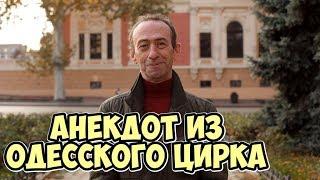 Анекдоты 2019 Анекдот про цирк Прикольные одесские анекдоты