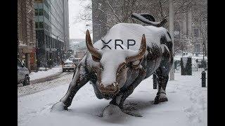 Ripple XRP Bull Runs More Stressful Than Bear Runs.  Be Ready.