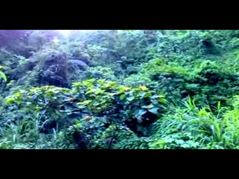 Sitakunda Eco Park