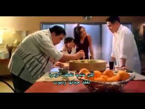 نسخة عن فيلم الاكشن,, الحارس الخاص,,جيتلي,,  كامل و مترجم للعربية,,, Film Jet Li The Defender