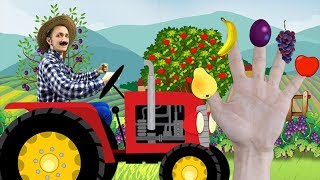 Learn Fruits at the Farm, Finger Family Nursery Rhymes simple Song