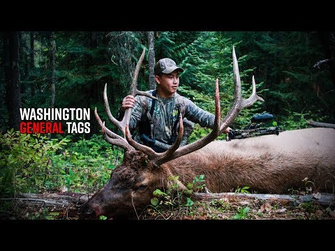 How To Buy Deer & Elk Tags In Washington | General Season Tags Edition