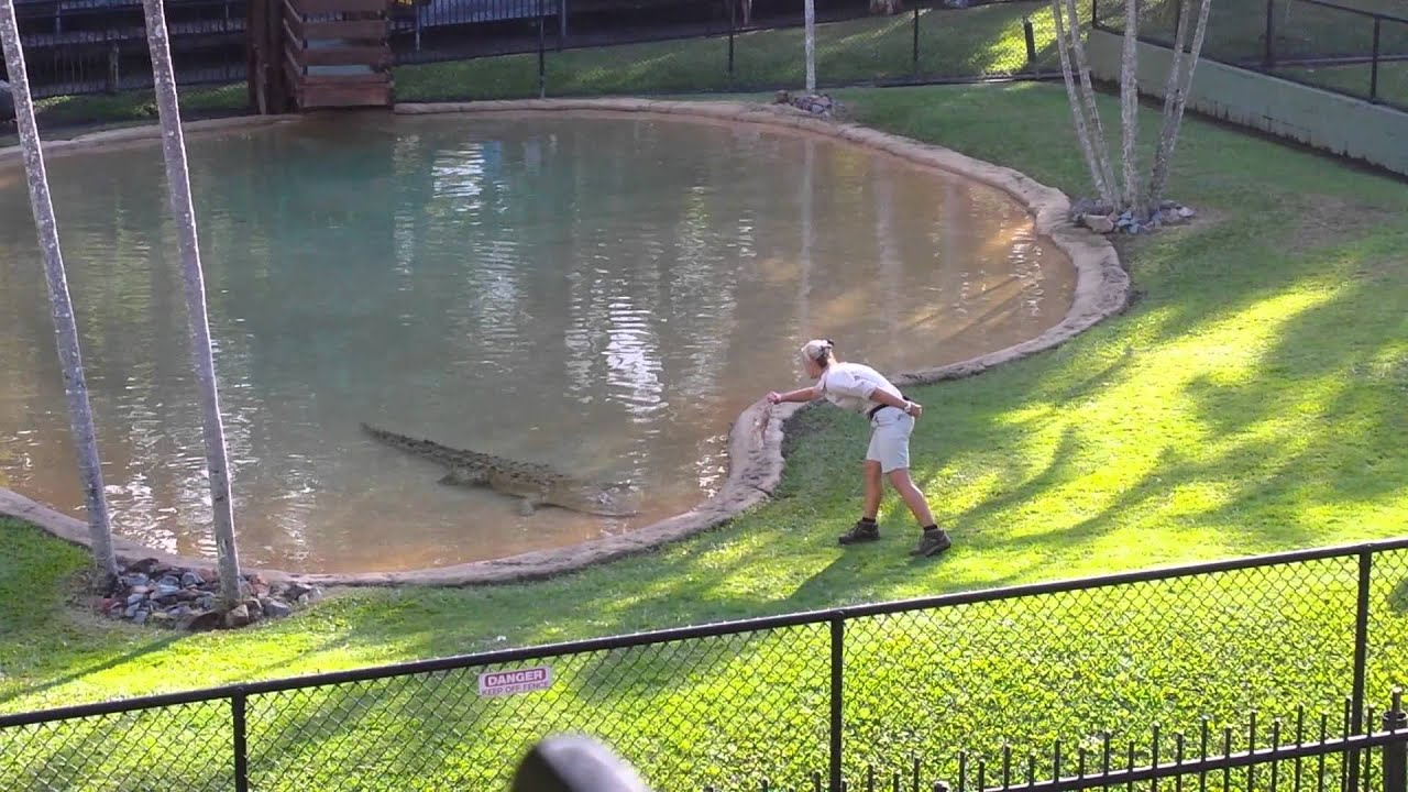 Feeding Casper At Australia Zoo Youtube