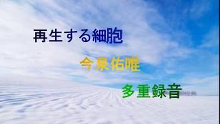説明 今泉佑唯(欅坂46)の「再生する細胞」を多重録音で演奏しました。今回はメロディーをフルートの音色で、画面は雪景色で作ってみま...