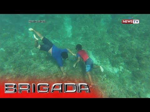 Brigada: Ulilang magkapatid, nangunguha ng pokpoklo bilang hanapbuhay