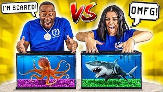 WHAT'S IN THE BOX CHALLENGE - UNDERWATER OCEAN ANIMALS