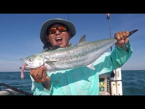 Florida Keys Gulf Side - Jewfish Basin - Spanish Mackerel