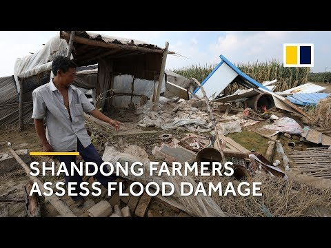 Farmers return to hardest-hit village after China flood
