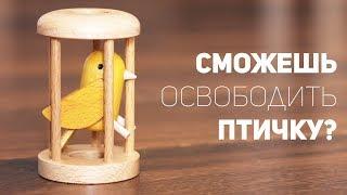 Скачать Птичка В Клетке Сможешь Освободить