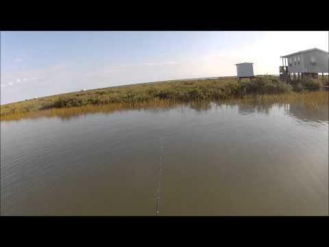 Catching Redfish On Redfish Magic