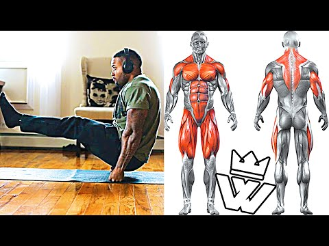 FULL BODY HOME WORKOUT | NO GYM!!