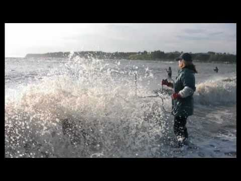 Struggling Fisheries of The Upper Cook Inlet