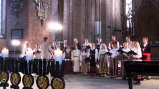 Dziesmu svētki 2013,viesu koru koncerts sv.Pētera baznīcā 7.07. - 00098