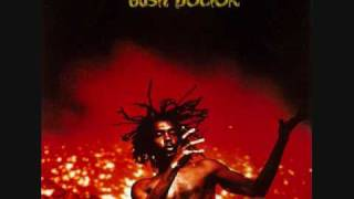 Watch Peter Tosh Bush Doctor video