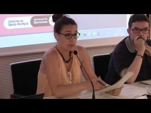 Consell de Barri d'Hostafrancs 18 07 2017, DTE03 Sants-Montjuïc