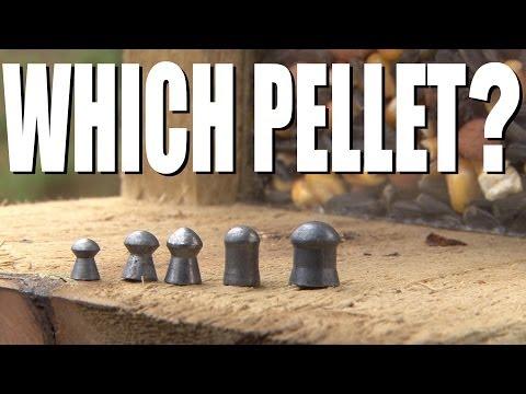 Which air rifle pellet?