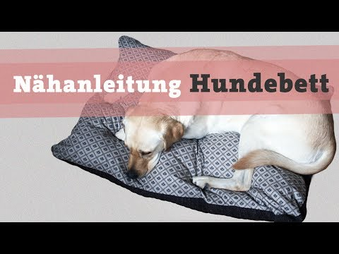 diy hundehalsband selber machen hund halstuch halsband n hen n hanleitung kostenlos funnycat tv. Black Bedroom Furniture Sets. Home Design Ideas
