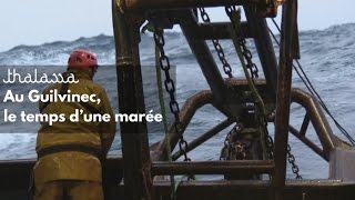 Au Guilvinec, le temps d'une marée  - Thalassa (reportage complet)