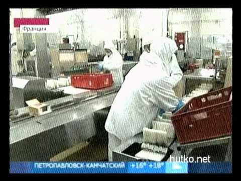 E.coli: теперь из Египта