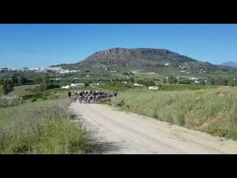 IX BTT Ciudad de Álora