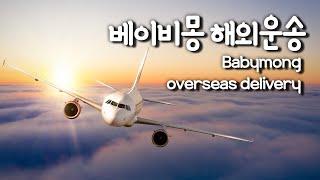 (ENG)베이비몽 강아지분양 전문, 해외 안전운송편 B…