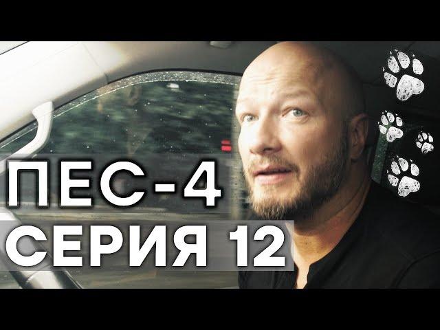 Сериал ПЕС - 4 сезон - 12 серия - ВСЕ СЕРИИ смотреть онлайн | СЕРИАЛЫ ICTV