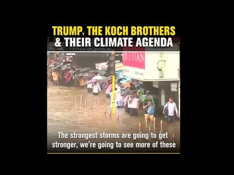 Quick Hit Video: Trump, The Koch Brothers and Their War on Climate Science