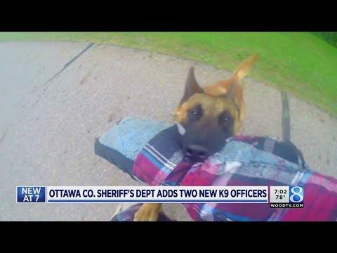 Training Ottawa County's new K-9 deputies