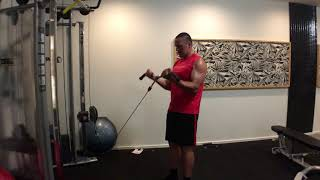Best Bicep Exercises - Cable Curls