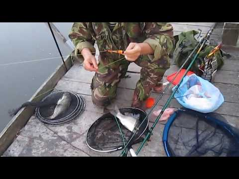 карповая рыбалка на спиннинг