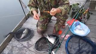 Ловля карпа на спиннинг. Рыбалка 2013. Карп.