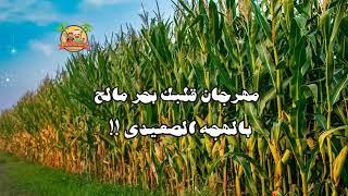 مهرجان قلبك بحر مالح مشينا صح مش عاجب - باللهجه الصعيدى !!😂