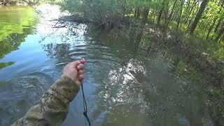 Рыбалка на сети Проверка ближнего кардона на наличие рыбы
