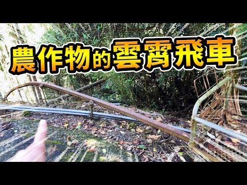 【英雄日常】EP35 農作物的雲霄飛車&太平雲梯!