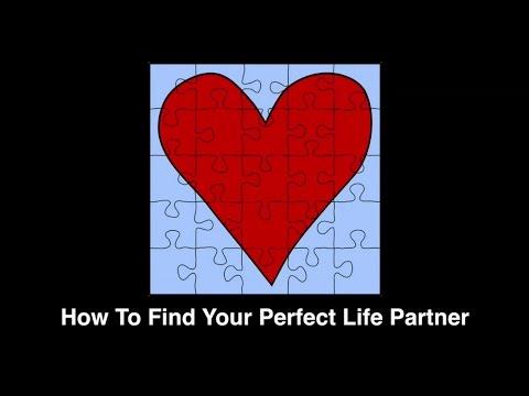 find new life partner
