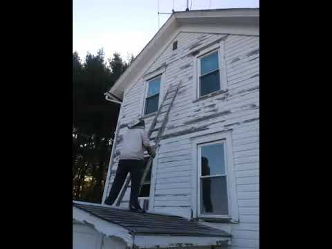 Spraying wasp nest with bee killer